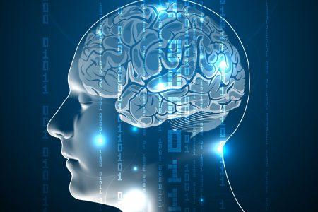 Jak funguje lidská paměť? Na její spolehlivost nesázejte!