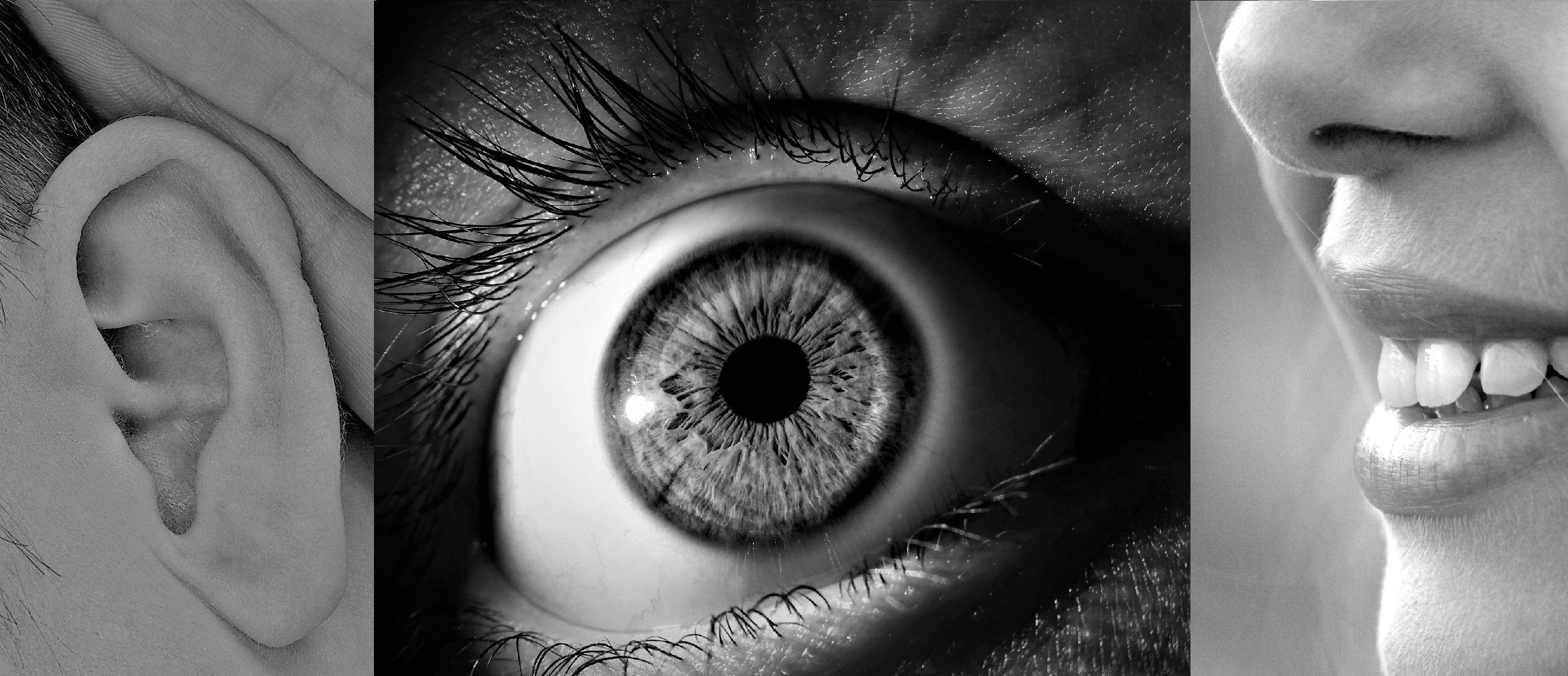 Jak funguje lidské vnímání pomocí zraku a sluchu? A existuje vůbec čas?