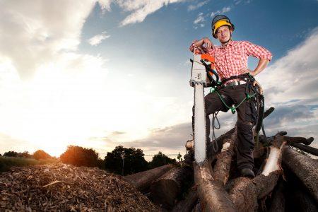 Mýty, kterým věříme. Je v Kanadě každý dřevorubec?